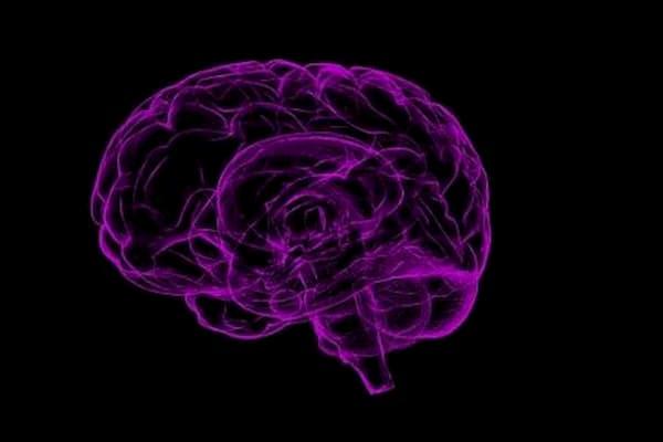 Como actua la dopamina en tu cerebro